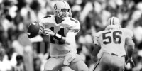 Jerry Jones' Portfolio of QB Draftees: No. 2  Bill Musgrave